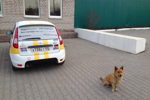 Лада Калина Спорт проехала на автовозе из Владивостока до Кемерова, затем своим ходом до Барнаула