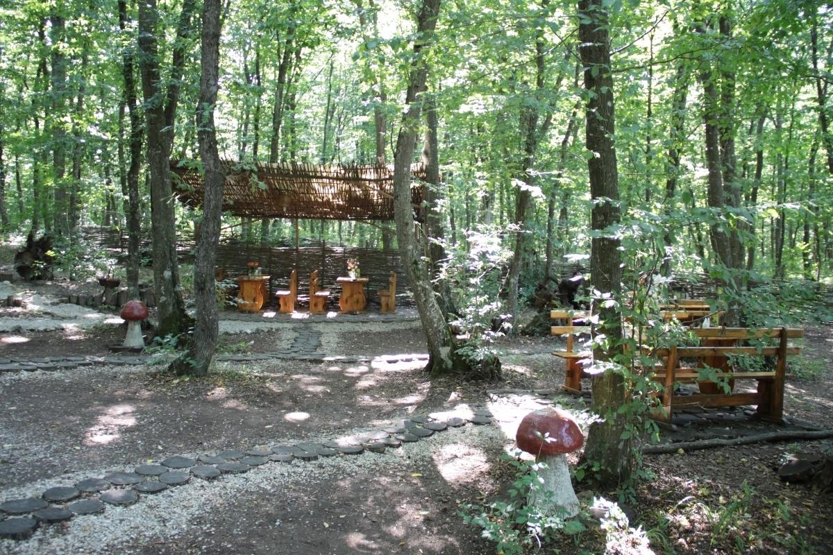 Прокуратура требует от хозяина «Белочки» 1,2 млн рублей возмещения ущерба за незаконное использование земельного участка в крымском лесу
