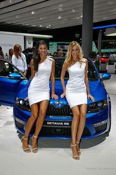 Итоговый обзор Франкфуртского автосалона 2013: зеленая эволюция автомобилей и прекрасные девушки (МНОГО ФОТО)
