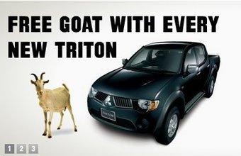 В Новой Зеландии покупателям пикапов Mitsubishi Triton (в России модель именуется L200) предлагают коз в качестве бесплатной опции.