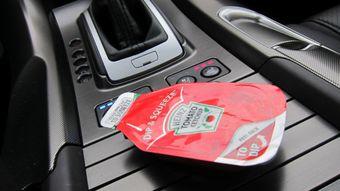На данном этапе проекта предполагается, что высушенную кожуру томатов можно использовать в качестве жгутов для автомобильной проводки или применять ее в создании салонных отсеков для хранения мелких предметов.