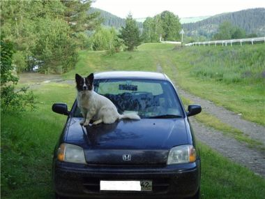 Путешествие Кемерово — Чемал (Горный Алтай) на Mazda Demio и Honda Logo