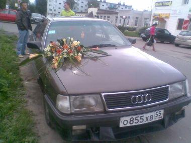 Поездка в Отрадное (Ленинградская область) из Омска на Audi 100 C3