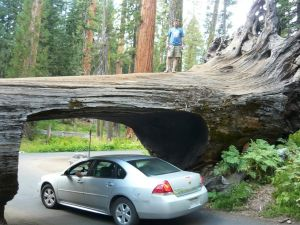 6 500 км по национальным паркам, заповедникам и музеям юго-запада США