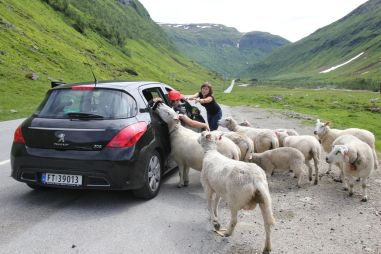 Путешествие по Норвегии на арендованном Peugeot 307