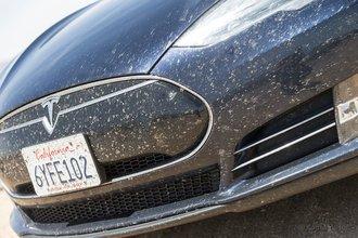 Айванпа, Калифорния: ни одно животное в ходе нашей рекордной поездки не пострадало, чего нельзя сказать о насекомых